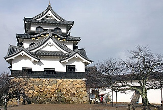 JapanShigaHikoneCastle[1].jpg