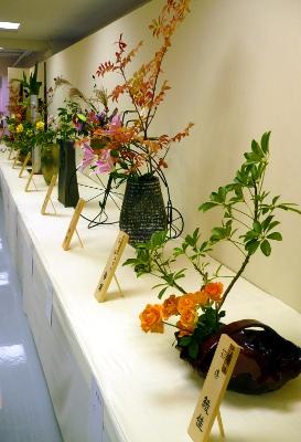 выставка цветов в Киото